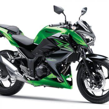 Kawasaki Ninja z 300 Ninjinha